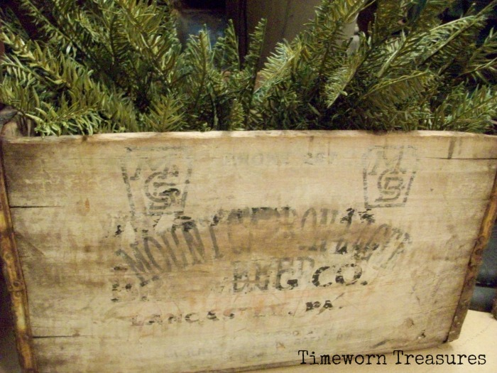 Lifelike pine in antique box