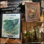 Spring & Summer Sale Extended!