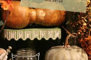 50% Off Fall & Halloween Sale!