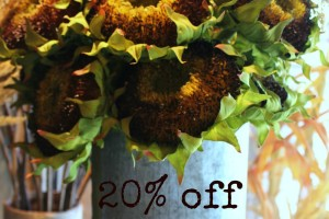 20% Off Fall Sale!
